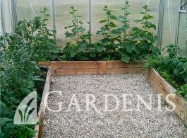 irengimas-siltnamis-gardenis