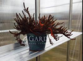 lentynele-20-cm-gardenis