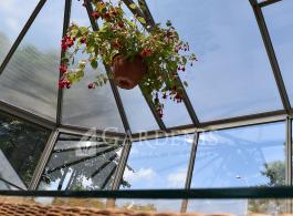Ovalia-siltnamis-oranzerija-Gardenis-a