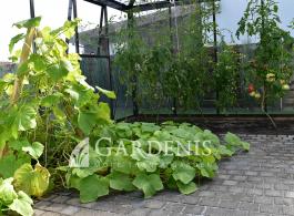 tetra siltnamio irengimas gardenis