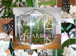 drugeliu-namai-muziejus-gardenis