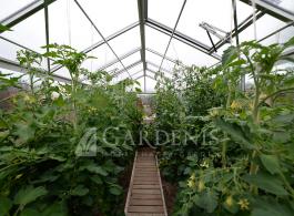 Erdvus-patogus-siltnamis-Gardenis