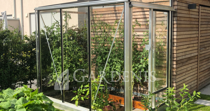 MURUS greenhouse lean to priesienis siltnamis Gardenis