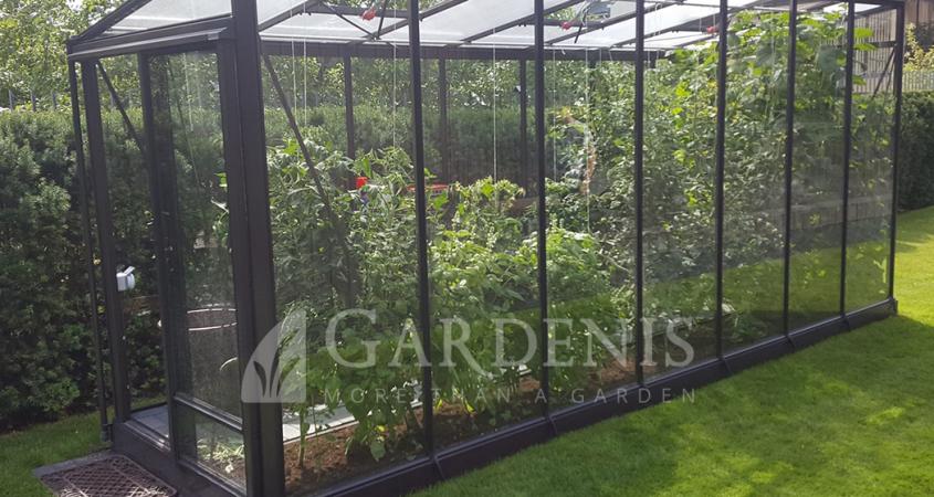 Priesienis-siltnamis-stiklinis-Gardenis