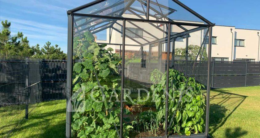 VENTUS-236-x-383-x-201-siltnamis-stiklinis-Gardenis