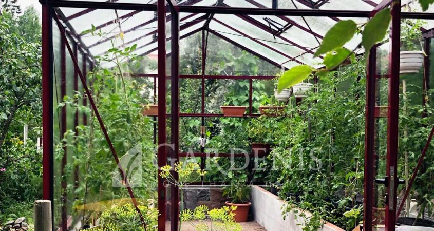 VENTUS-on-wall-greenhouse-drivhus-siltnamis-kasvuhoone
