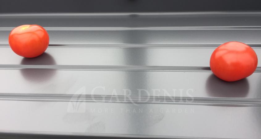 Lentyna siltnamiui 20 cm Gardenis