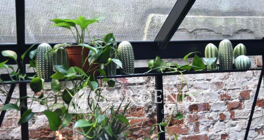 Lentynele siltnamiui Gardenis shelves for greenhouse