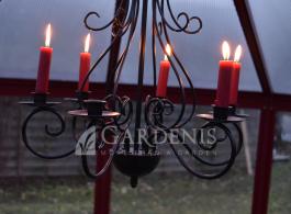 oranzerija-siltnamis-greenhouse-vakaras Gardenis