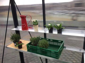 begine-lentyna gardenis