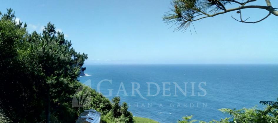Gardenio šiltnamis VENTUS Ispanijoje ant jūros kranto