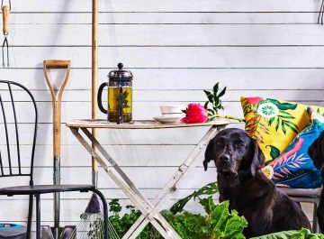 Gardenis-Stokholmo paroda-2019